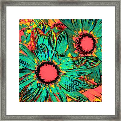 Pop Art Daisies 3 Framed Print by Amy Vangsgard