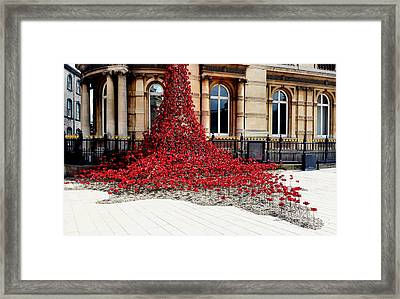 Poppies - City Of Culture 2017, Hull Framed Print
