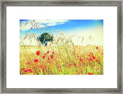 Framed Print featuring the photograph Poppies With Tree In The Distance by Silvia Ganora