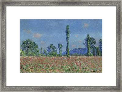 Poppy Field, Giverny Framed Print by Claude Monet