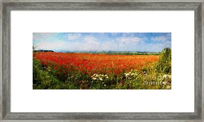 Poppy Fields Framed Print by ShabbyChic fine art Photography