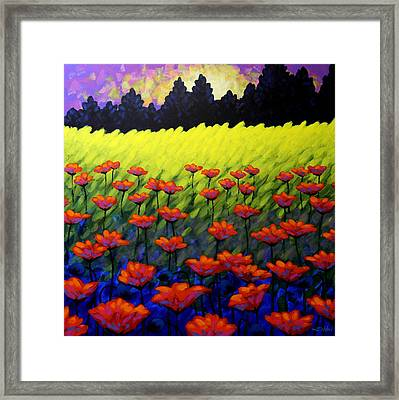 Poppy Vista Framed Print by John  Nolan