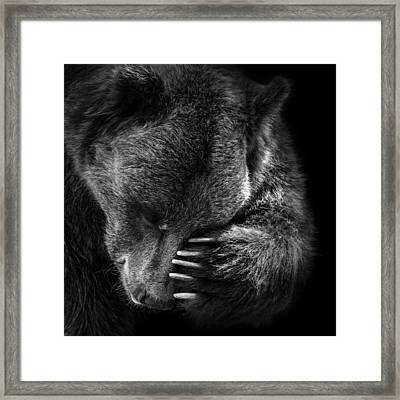Portrait Of Bear In Black And White Framed Print