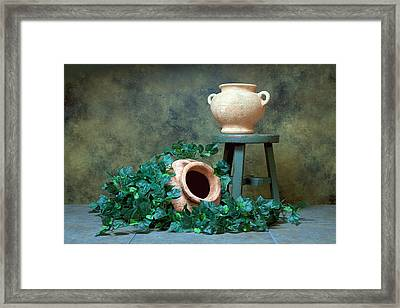 Pottery With Ivy I Framed Print