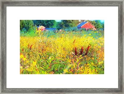 Prairie Farm House Framed Print