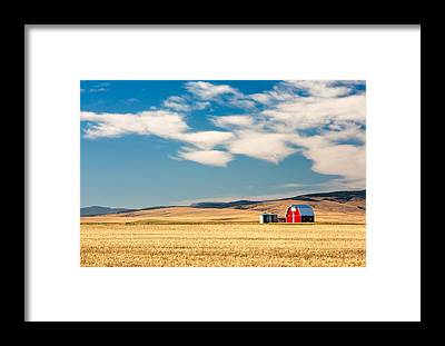 Farmhouse Framed Prints