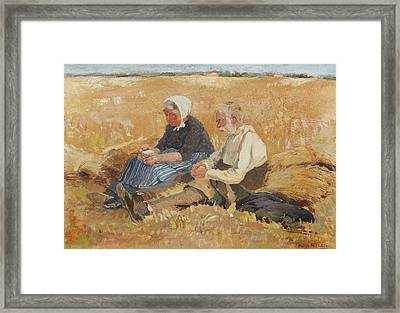 Prayers In The Cornfield Framed Print