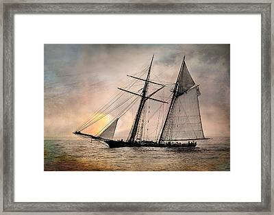 Pride Of Baltimore II Framed Print