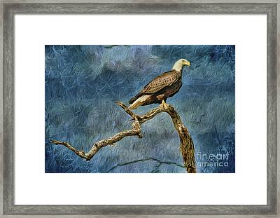Pride Strength And Courage Framed Print by Deborah Benoit