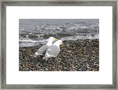Framed Print featuring the photograph Promenade 1 by Sergey  Nassyrov