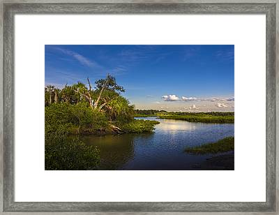Protected Wetland Framed Print by Marvin Spates