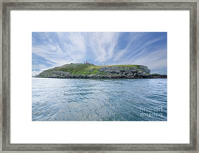 Puffin Island Framed Print by Steev Stamford