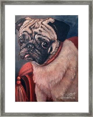 Pugsy Framed Print