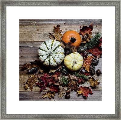 Framed Print featuring the photograph Pumpkins by Rebecca Cozart