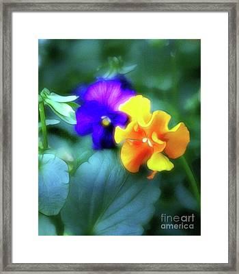 Purple And Gold Framed Print by Judi Bagwell