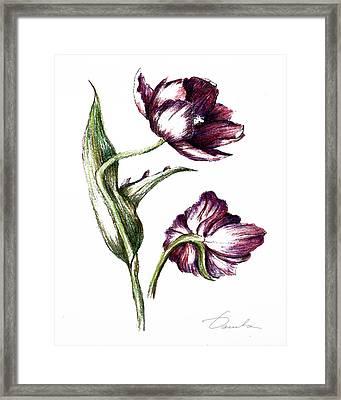 Purple Flower Framed Print by Danuta Bennett