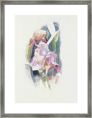 Purple Iris Framed Print by Charles Demuth