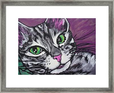 Purple Tabby Framed Print by Sarah Crumpler