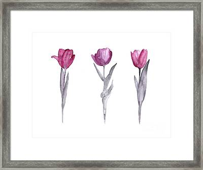 Purple Tulips Watercolor Painting Framed Print