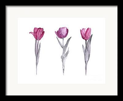 Flower Silhouettes Framed Prints