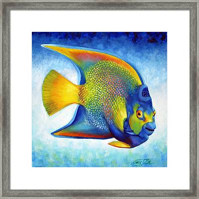 Queen Angelfish Framed Print by Nancy Tilles