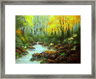 Quiet  Time And  Place Framed Print by Shasta Eone