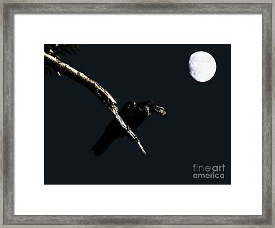 Quoth The Raven Nevermore Framed Print by Wingsdomain Art and Photography