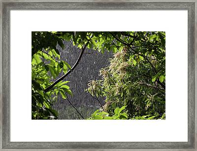 Framed Print featuring the photograph Rain by Bruno Spagnolo