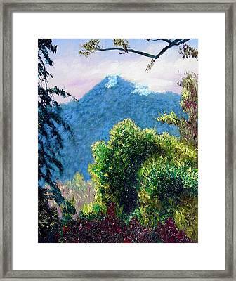 Rain Forrest Mountain Framed Print by Stan Hamilton