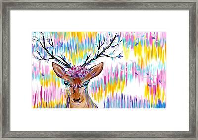 Rainbow Framed Print by Cathy Jacobs