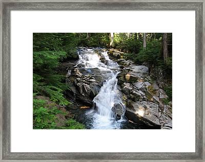 Rainier Waterfall Framed Print by Ty Nichols