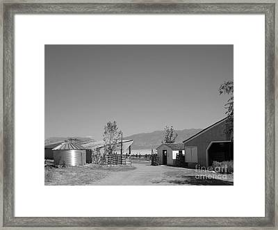Ranch Framed Print by Lisa Schafer