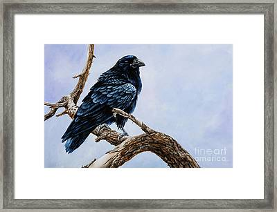 Framed Print featuring the painting Raven by Igor Postash