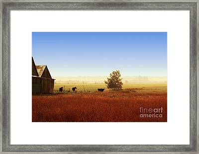 Rawdon Everyday Life Framed Print by Aimelle