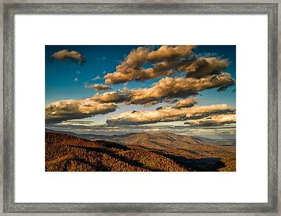 Reaching For The Light Framed Print
