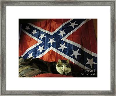 Rebel Cat Framed Print by Frederick Holiday