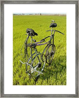 Recycled Love Framed Print by Steve Mudge
