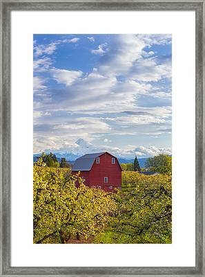Framed Print featuring the photograph Red Barn And Mt Hood by Patricia Davidson