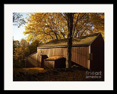 Connecticut Farms Framed Prints