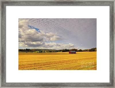 Red Barn Framed Print by Veikko Suikkanen