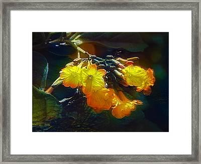 Red Flower On Dark Sky Framed Print by Evgeny Parushin