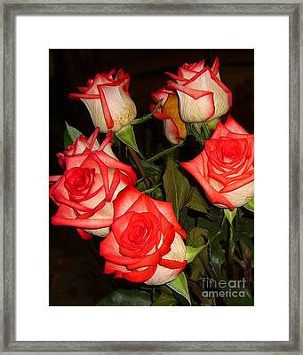 Red Fringed Roses Framed Print by Merton Allen
