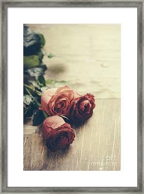 Red Roses Framed Print by Jelena Jovanovic