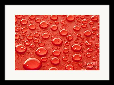 Rain Drops Framed Prints
