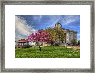 Redbud At The Courthouse  Framed Print by Larry Braun