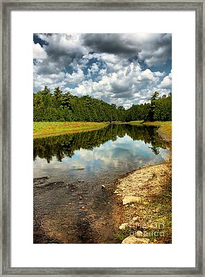 Reflection Of Nature Framed Print
