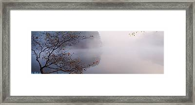 Reflection Of Trees In A Lake, Lake Framed Print by Panoramic Images