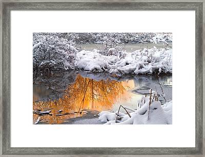 Reflections In Melting Snow Framed Print by Neil Doren