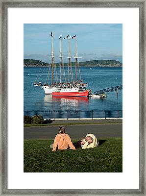 Relaxing On The Coast Framed Print