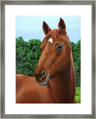 Retired Racer Framed Print